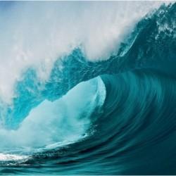 PZL 1000 BIG WAVE: EDITION WEINGARTEN